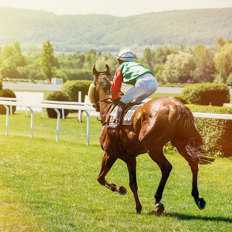 Group transport for all race days at Cartmel, we're the perfect transport solution for groups travelling from Blackpool, the Fylde Coast and Lancashire